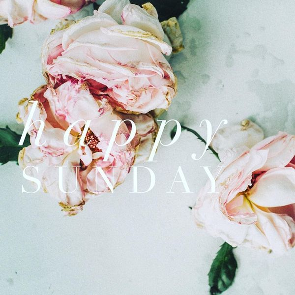 Hermosas citas de Happy Sunday para el pie de foto de Perfect Instagram 27