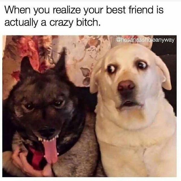 Funny Best Friend Memes [Noviembre 2019] 21