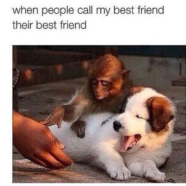 Funny Best Friend Memes [Noviembre 2019] 8
