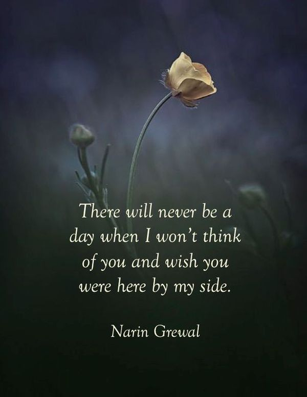 Citas y dichos de la abuela 5