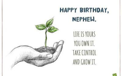 Feliz cumpleaños para el sobrino 1