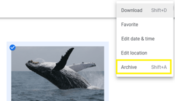 ¿Qué significa archivar en Google Photos? 4