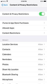 Cómo bloquear sitios web en un iPhone [diciembre de 2019] 2