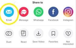 ¿Cómo descargar los vídeos de TikTok directamente a Android? 5