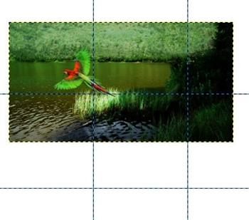 Cómo hacer un fotomontaje en Gimp 4