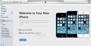 Cómo usar un iPhone sin una tarjeta SIM 3