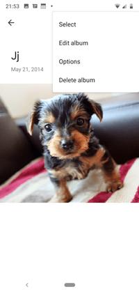 Cómo añadir la ubicación a Google Photos 2